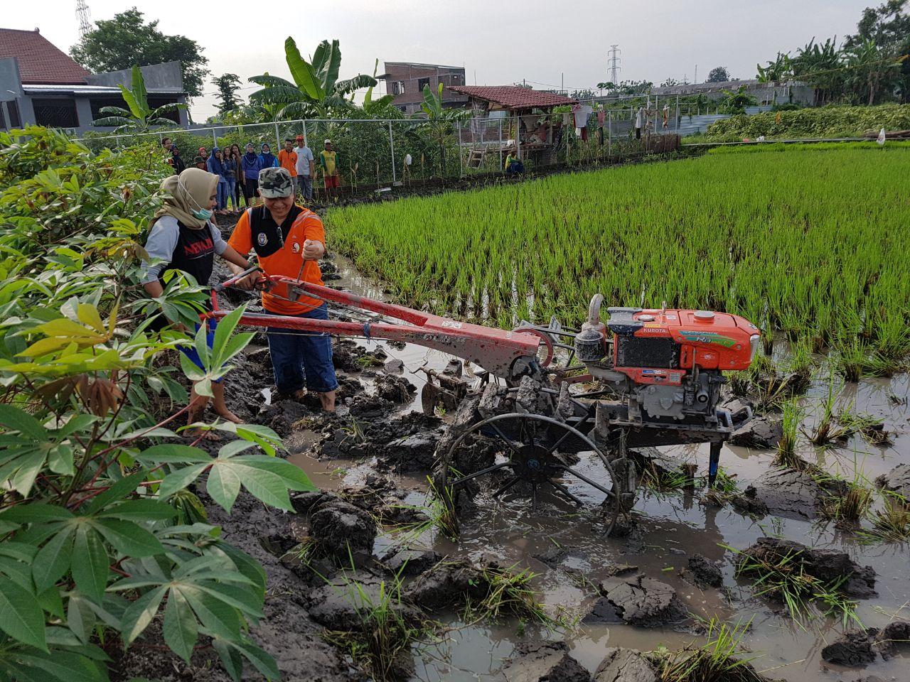 Praktikum Mekanisasi Pertanian